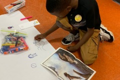 Responding to a terrific story: The Boy Who Lived with the Seals!